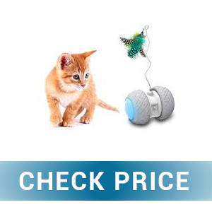 MalsiPree Robotic Interactive Cat Toy