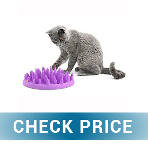 TOPNICES 2020 Upgrade Slow Feeder Cat Bowls